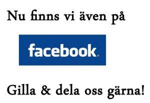 Facebook_logga_till-hemsidan